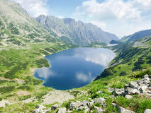 View from above of the mountain lake. With coasts overgrown with grass and mountain pine on the background of the craggy mountain slopes and sky with clouds stock photography