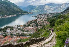 View from above Old Town of Kotor in Montenegro royalty free stock image