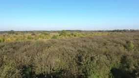 View from above orchard and trees. Drone aerial view from Poland stock video footage