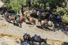 A view from above of the parking of the donkey taxi at the top point of the Lindos acropolis. Rhodes Island, Greece stock image
