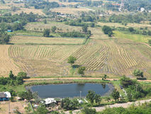 View from above of the plowed rice field, houses and plantations in a rural area of Thailand Stock Photos