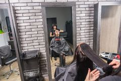 View from above on professional hairdresser combing wet hair of. Young brunette women while she is sitting in armchair in beauty salon Stock Photos