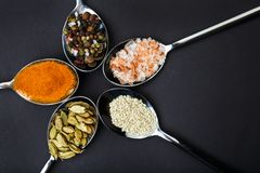 View from above. Spoons are spread out in a circle with different spices. Stock Photos