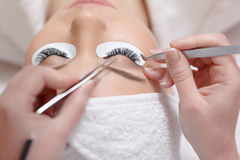 View from above of stylist lengthening lashes. Stock Images
