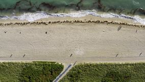 View from above at sunny beach in Miami in USA stock footage