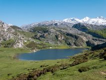 View from above to the Ercina mountain lake near Covadonga, Astu Stock Photos