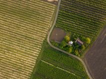 Planted agricultural fields with a road and a house, top view. View from above on two agricultural fields planted with different crops with a road for cars and a Royalty Free Stock Photography