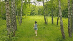 View from above young woman in forest. Smiling girl in birch grove. View from above young woman in forest. Drone view attractive young woman walking walking in stock video footage