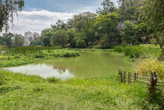 View of the Aclimacao Park nature in Sao Paulo stock photos