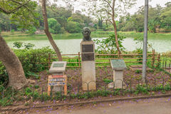 View of the Aclimacao Park nature in Sao Paulo. Sao Paulo, Brazil - October 15 2016: View of the Aclimacao Park nature. This park was the first zoo in Sao Paulo Stock Photos