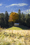 View across an alpine valley with autumn trees Royalty Free Stock Photo