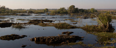 View across Botswanian delta Royalty Free Stock Image
