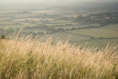 View across English countryside landscape during late Summer eve. English countryside landscape during late Summer afternoon with dramatic sky and lighting Royalty Free Stock Photo