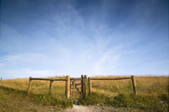 View across English countryside landscape during late Summer eve. English countryside landscape during late Summer afternoon with dramatic sky and lighting Royalty Free Stock Photography