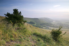 View across English countryside landscape during late Summer eve Royalty Free Stock Images