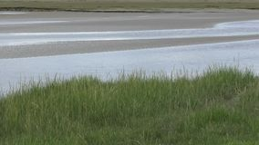 View across an estuary stock video footage