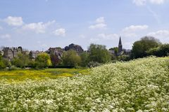 Picturesque Wiltshire, Malmesbury Abbey. View across fields to historic Malmesbury Abbey and the town in spring sunshine in the Cotswolds,Wiltshire, UK Stock Photo