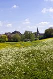 Picturesque Wiltshire, Malmesbury Abbey. View across fields to historic Malmesbury Abbey and the town in spring sunshine in the Cotswolds,Wiltshire, UK Stock Image