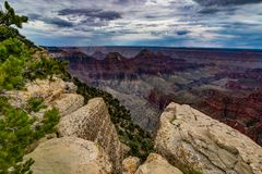 View across Grand Canyon North Rim Arizona Royalty Free Stock Images