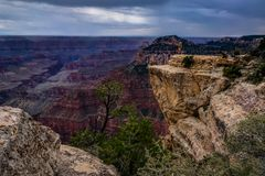 View across Grand Canyon North Rim Arizona Stock Photos