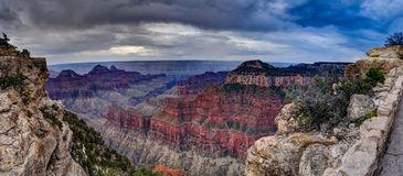 View across Grand Canyon North Rim Arizona Royalty Free Stock Photography