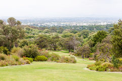 View across Kirstenbosch National Botanical Gardens towards Cape Stock Photos