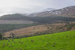 A view across one of the many snow topped hills and valleys of the Mourne Mountains in County down in Northern Ireland on a dull m royalty free stock photo