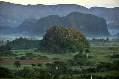 View across the Vinales Valley in Cuba. Morning twilight and fog. Royalty Free Stock Image