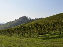 Castle in the  vineyards Royalty Free Stock Photography