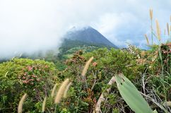 View of active volcano Yzalco Stock Photography