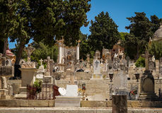 View of the  Addolorata Cemetery tombstones Stock Photo