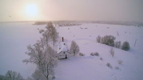 The view in aerial shot of the forest in white snow stock video footage