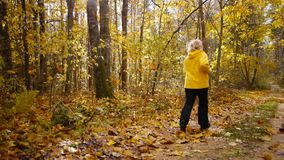 Aged sporty woman jog in autumn forest stock video footage