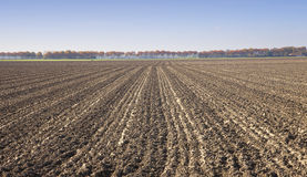 View at agricultural field Royalty Free Stock Photography