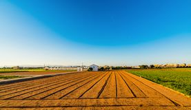 View of agricultural fields and buildings near Valencia before sunset. Spain.  stock photography