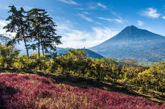 View of Agua Volcano outside Antigua, Guatemala royalty free stock image