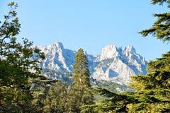 View of Ai-Petri mountain from Alupka, Crimea. View of Ai-Petri mountain from Alupka garden in autumn day, Crimea stock image