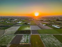 View from the air to the agrarian fields during a bright sunset near the bays of Port Saplaya. Valencia Stock Photo