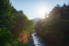 View of of the Akigawa valley, Japan. View from the ishibune bridge of the Akigawa valley in the west of Tokyo, Japan Royalty Free Stock Images