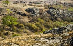 A canyon stones. View of Aktovskiy Canyon, Nikolaev region, Ukraine Royalty Free Stock Image