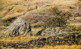 A canyon stones. View of Aktovskiy Canyon, Nikolaev region, Ukraine Stock Image