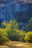 Trees and bushes at canyon. View of Aktovskiy Canyon, Nikolaev region, Ukraine Royalty Free Stock Image