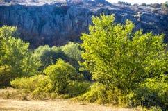Trees and bushes at canyon. View of Aktovskiy Canyon, Nikolaev region, Ukraine Stock Image