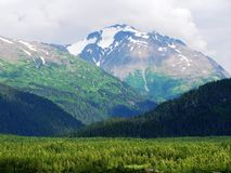 View of Alaska landscape. A view of and Alaskan landscape royalty free stock image