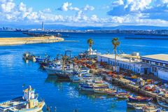 View of Algiers the capital of Algeria royalty free stock image