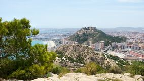 View of Alicante town, port, sea and Santa Barbara Castle on Benacantil mount from Serra Grossa mountain. Conifer tree