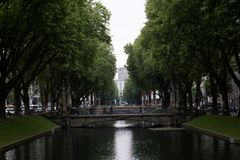 View on an allee surrounded by trees in düsseldorf germany. View on an allee surrounded by trees in düsseldorf germany and photographed during a sightseeing royalty free stock images