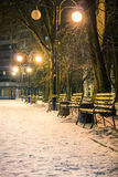 View of alley and benches through snowing, night shot Stock Photography