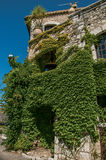 View of alley and stone house with staircase and bindweed in Saint-Paul-de-Vence. Royalty Free Stock Photography
