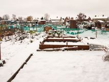 view of allotment covered in snow in winter Royalty Free Stock Photos